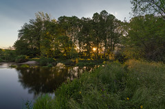 AMP_5760_1 copia (Amparo Hervella) Tags: longexposure sunset espaa sun reflection tree sol water de landscape atardecer spain agua nikon paisaje rbol puesta reflejos candeleda largaexposicin embalsederosarito d7000 nikond7000