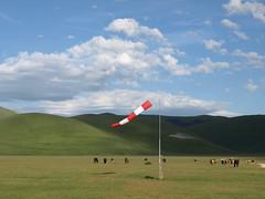 Flying horses (Fraser P) Tags: flowers italy mountains primavera landscape spring umbria castelluccio pianogrande fiorita