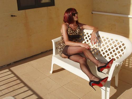 Leopard Print Stockings Tease
