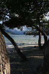 IMG_4691 (docguy) Tags: canada alberta watertonnationalpark albertacanada watertonpark