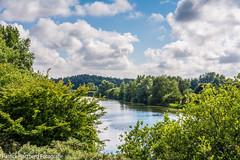 DSC_9400 (Patrick Herzberg) Tags: sky lake holland water nikon meer outdoor nederland wolken zomer serene uitzicht lucht landschap 2016 amsterdamsewaterleidingduinen d5200