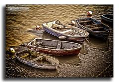 Row Boats (bonksie61) Tags: yabbadabbadoo flickrstars royalgroup flickraward almostanything allin1 shining★star