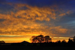 Ciel de feu sur le terril... (Nath...*) Tags: orange nature jaune french photography photo nikon flickr photographie belgique picture silhouettes ciel arbres nuages campagne franais couleur coucherdesoleil photographe wallonie terril nathaliedupont wwwdupontnathaliecom nathaliedupont