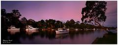Silohuettes_web_CLR (Beetwo77) Tags: panorama seascape water landscape scenery stitch pano sydney scenic australia panoramic nsw stitching stitched giga pleasurepoint nex westernsydney westernsuburbs autopano georgesriver 5n autopanogiga nex7 nex5n sonynex7 sonynex5n