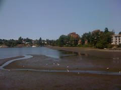 Low!!! Tide