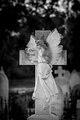 DSC02121 (Thielzy) Tags: white black cemetery stone statues angels