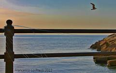 lenza (2) (Francesco Lo Presti) Tags: italy barca italia tramonto mare alba sale ali volo porto sicily palermo acqua infinito azzurro arancio luce sicilia gabbiano pescatore onde corrente orizzonte ferro ringhiera porticciolo scoglio pescare porticello santaflavia lenza acquasalata francescolopresti loprestifrancesco