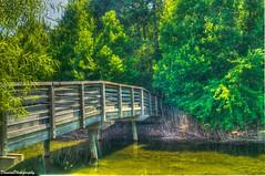Sandy Shores Trail