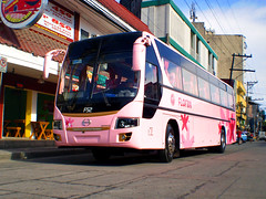 GV Florida F52 (eugenegene01) Tags: pink bus buses florida transport nation manila enthusiast society hino inc laoag pilipinas f52 philippine gv grandeza tuguegarao sampaloc philbes eugenegene01