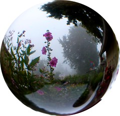 misty morning in the ball (april-mo) Tags: mist misty ball sphere brume crystalball spheric experimentalphotography brumeux crystalballphotography