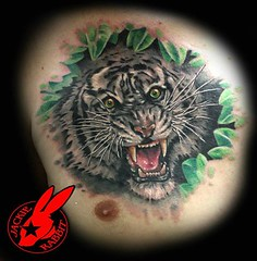 White Tiger Tattoo by Jackie Rabbit (Jackie rabbit Tattoos) Tags: city portrait white tattoo cat real star virginia cool colorful good awesome tiger great kitty roanoke jungle va realistic jackierabbit