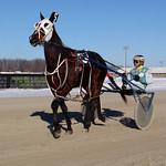 102 - race 7 - Free Bird Mindale w/ David Lake thumbnail