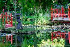 Serenity #2 (zebrazoma) Tags: light water eau jardin reflet reflect lumiere serenity pont dxo vendee 70200 japonais d4 serenite 1250iso flickraward nikonflickraward courtdaron stcyrentalmondais