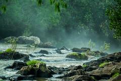 (juanmagtzph) Tags: water agua selva arroyo