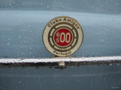 Clube Amigos Fiat 600/500 Portugal (Agaesse) Tags: amigos portugal fiat d 600 500 clube multipla 500600 agaesse