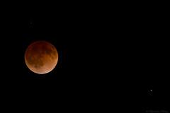 Blood Moon (cll) Tags: moon price eclipse utah blood lunar