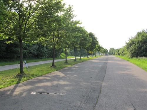 ehem. A8-Trasse am Boßler Mai 2011_009