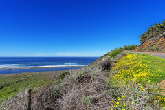 Big Sur Coastline California-Central-Coast 2016-05-02 (randyandy101) Tags: ocean california road flowers blue sunset sea sky panorama sun seascape flower reflection beach water rock fence outdoors photography coast sand rocks whitewater surf waves view outdoor hiking offshore hill shoreline bigsur rocky bluesky cliffs hills highway1 shore vista coastline cambria raggedpoint californiacentralcoast cambriaca bigsurhighway sancarpoforocreek cambriapinesbythesea