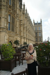The Terrace, The Palace of Westminster, Westminster, London (Alwyn Ladell) Tags: london westminster housesofparliament riverthames theterrace thepalaceofwestminster sw1a0aa bournemouthinbloom lesleybird