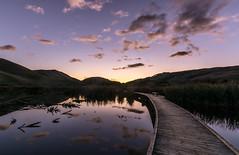 Pathway to the sun (lizcaldwell72) Tags: hawkesbay newzealand reflection sky clouds water sunrise pekapekaswamp light