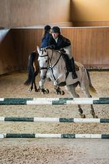 (yasminabelloargibay) Tags: horse caballo cheval grey bay corua mare pony chestnut cavalier horseshow cavalo pferd canter hest paard horserider gelding hipica hipismo casasnovas