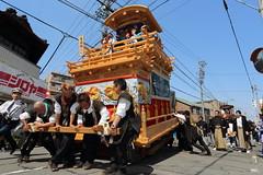 Youth (Teruhide Tomori) Tags: people festival japan event  float  gifu ogaki  ogakifestival importantintangiblefolkculturalproperties