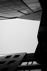 form.jpg (Daniel Gentsch) Tags: sigmatune danielgentsch photography photos raw nikon d300 kamera nikond300 elektonik objektiv nikor camera glass hardware reflection equipment nikkor dx explore bw blackwhite sw schwarzweiss schwarzweis blackandwhite germany black white monochrome blanconegro foto flickr shotoftheday me lightroom photo