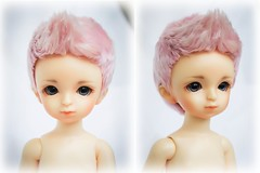 commission wig (SophyMolly) Tags: pink portrait male doll yo puff goat sd curly wig mohair bjd angora custom volks commission abjd vivien braid elfdoll customdoll