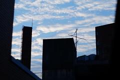 (  / Yorozuna) Tags: building silhouette japan tokyo        shinjukuward  wakamatsukawada    pentaxautotakumar55mmf18