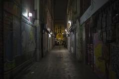 . (Le Cercle Rouge) Tags: paris france saintmartin garedelest painters graffitis 75010 passagedumarch