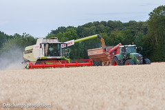 16072015-IMG_7643 (Deschamps productions) Tags: tractor wheat harvest combine harvester tracteur moisson bl fendt claas lexion cestari transbordeur moissonneuse