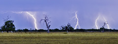 Working the land (RCC Photography) Tags: storm rain danger photo image australia perth western wa thunderstorm lightning fremantle leighton pinjarra
