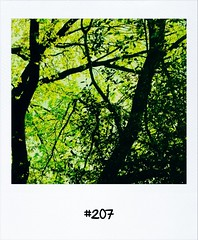 """#DailyPolaroid of 23-4-12 #207 • <a style=""""font-size:0.8em;"""" href=""""http://www.flickr.com/photos/47939785@N05/6970275410/"""" target=""""_blank"""">View on Flickr</a>"""