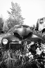 (soulshine59) Tags: blackandwhite abandoned decay massachusetts rusty canon5d oldcars vintagecars rustyoldcars