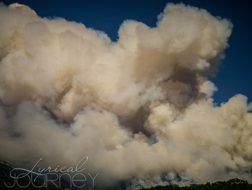 Alpine Quail Fire (6 of 33)
