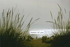 B.O.Y. (Rob Aparicio) Tags: sea portrait sky film beach analog gris mar plantas shadows bokeh playa arena cielo silueta 18 sombras 50mm18 analgico marrn paramore canoneos1000d bewareofyou robaparicio robertoaparicio hayleywilliamsquote robaparicioflickr