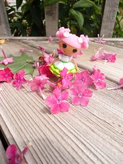 Blossom's Garden (shortverk) Tags: flowers outside dolls lala dollies lalaloopsy blossomflowerpot