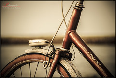Bike (_Hadock_) Tags: windows wallpaper macro apple bike wall sepia paper de photography spain nikon imac ipod creative fuente 7 8