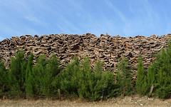 20090620_0820_1020303.jpg (m.vgunten) Tags: spain andalusia r2 ubrique flickr2009 bikeespaña picasa2009