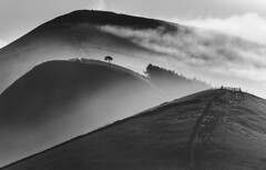 Back Tor (John Finney) Tags: blackandwhite mist mountains silhouette fog mystery sunrise mono gates hills lonetree edale peakdistrictnationalpark losehill backtor greatridge hopevally heatinversion johnfinneyphotography
