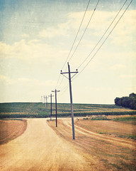 The Road to Dreams (Melanie Alexandra Photography) Tags: geometric rural vintage countryside midwest farm country iowa retro driveway dirtroad telephonepoles dyersville