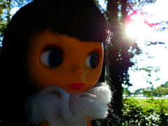 Lovely Sunbeams