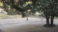 playing horseshoes at Black Bar Lodge (muz4now) Tags: nature outdoors horseshoes