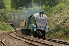 """LNER No 4464 Gresley Class A4 Pacific """"Bittern"""" descends from Whiteball Tunnel with the Up Torbay Express, Sunday 19th August 2012 (kitmasterbloke) Tags: pacific engine somerset artdeco locomotive streamlined a4 steamtrain bittern lner gresley torbayexpress 4464 whiteballtunnel"""