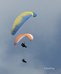 Paragliders ~Dave Platt & Chuck Leathers~ (Ron1535) Tags: golden wing roll pitch paragliding soaring glider lookoutmountain paragliders thermals mtzion yaw freeflight colordao freeflyers flexiblewing glideraircraft soaringaircraft ramairdesign paragliderpilots