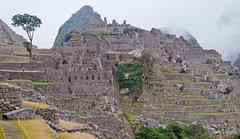 Machu Picchu-127