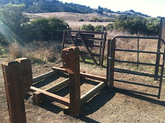 New Gate Photo