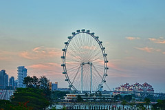 Singapore Flyer (chooyutshing) Tags: singapore ferriswheel marinabay observationwheel touristsattraction rafflesboulevard singaporeflyer aerialviewing 164mhigh