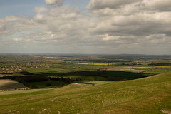 WHH-13 (liamworrall) Tags: england horse white hill oxfordshire