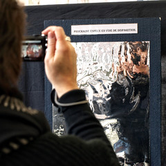 19| La Vie  Mort  20090513.1244 (Lieven SOETE) Tags: brussels people belgium belgique bruxelles social menschen personas persone human 2009 personnes  intercultural umanit interculturel socioartistic sintjansmolenbeeksaintjean